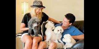 Pasangan Hebat Mengadopsi Anjing Buta