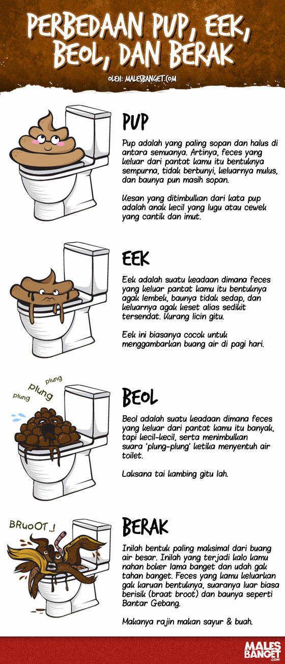 Perbedaan PUP, Eek, Beol dan Berak