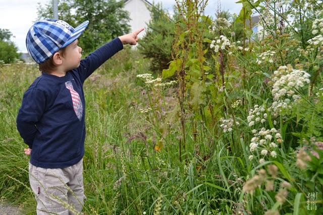dziecko, przyroda, owady