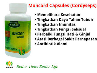 MUNCORD CAPSULES (PENYEIMBANG)