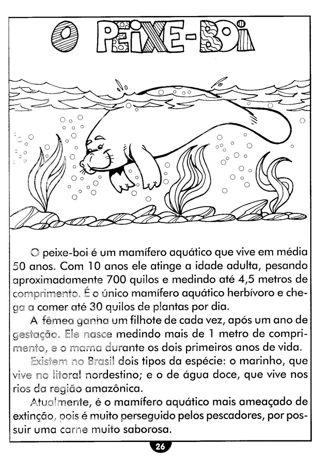 Top Blog Professor Zezinho : Atividades de Ciências sobre os animais  IM97