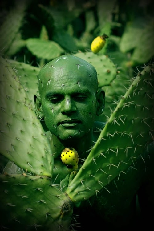 13-Cactus-Body-Paint-Johannes-Stötter-Musician-Fine-Art-Body-Painter-www-designstack-co