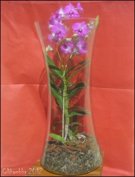 COMO FAZER FLOR DE EVA PARA CASAMENTO - Fotos De Vasos De Flores Em Eva