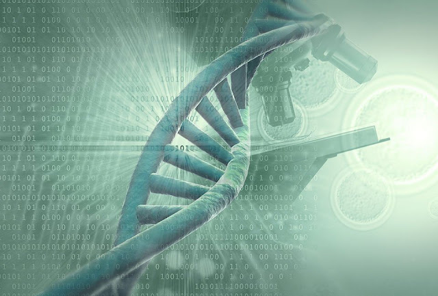 Activating Your DNA With The Source Floodlight  Dna