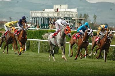 14.10.2013 pazartesi bursa osmangazi yarışları