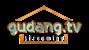 Nonton tv di Gudang TV