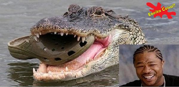crocodilo, crocs, xzibit, eeeitacoisa