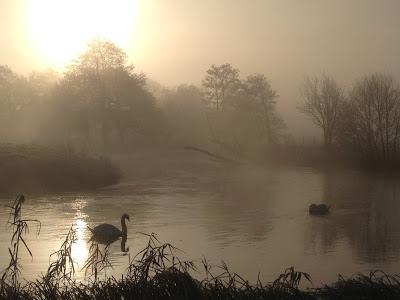 Sadler's Mill, Romsey - Simon Colenutt - The Deskbound Birder