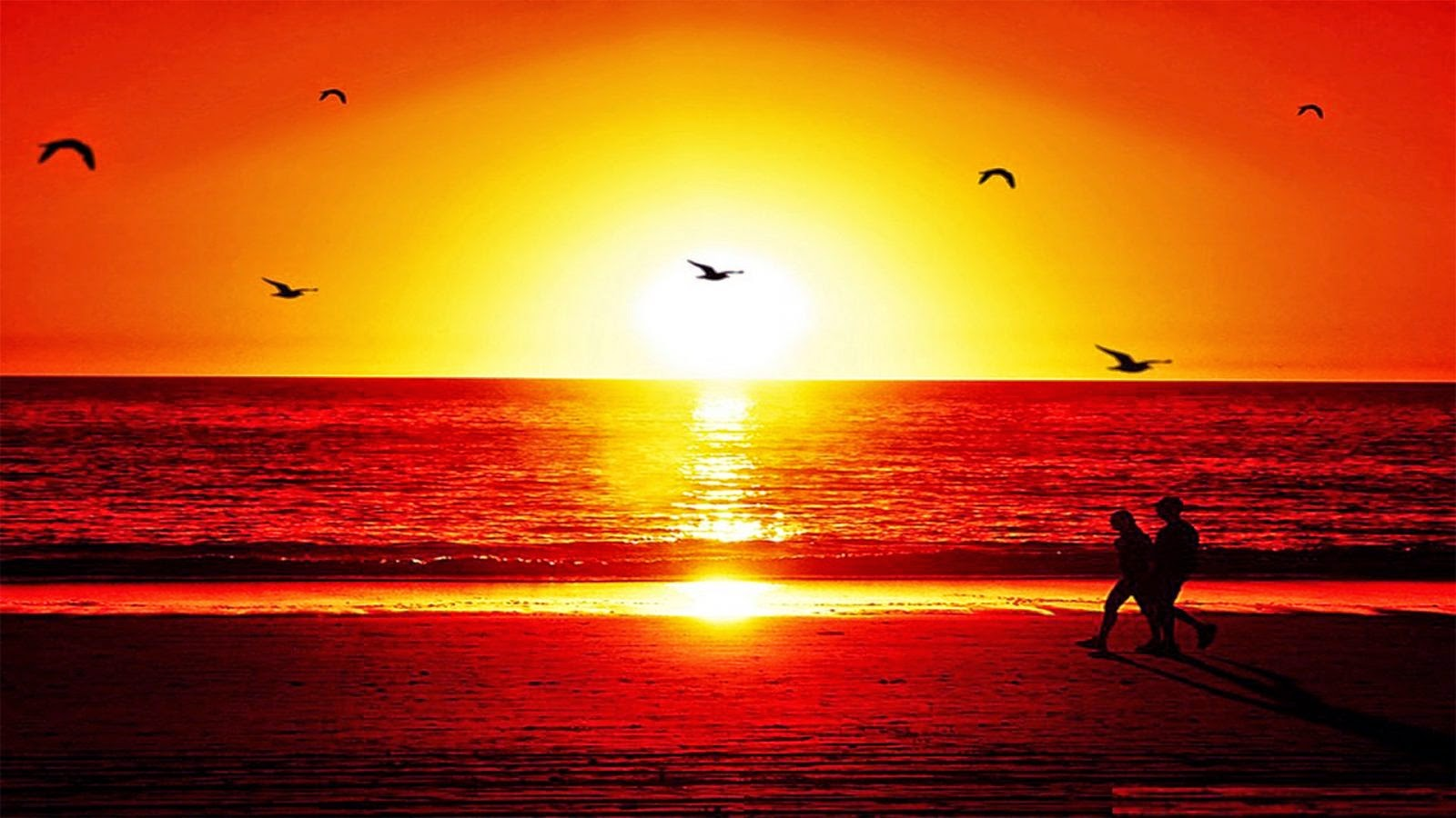 Chame a ELETROGUARD, porque o sol nasceu para todos...