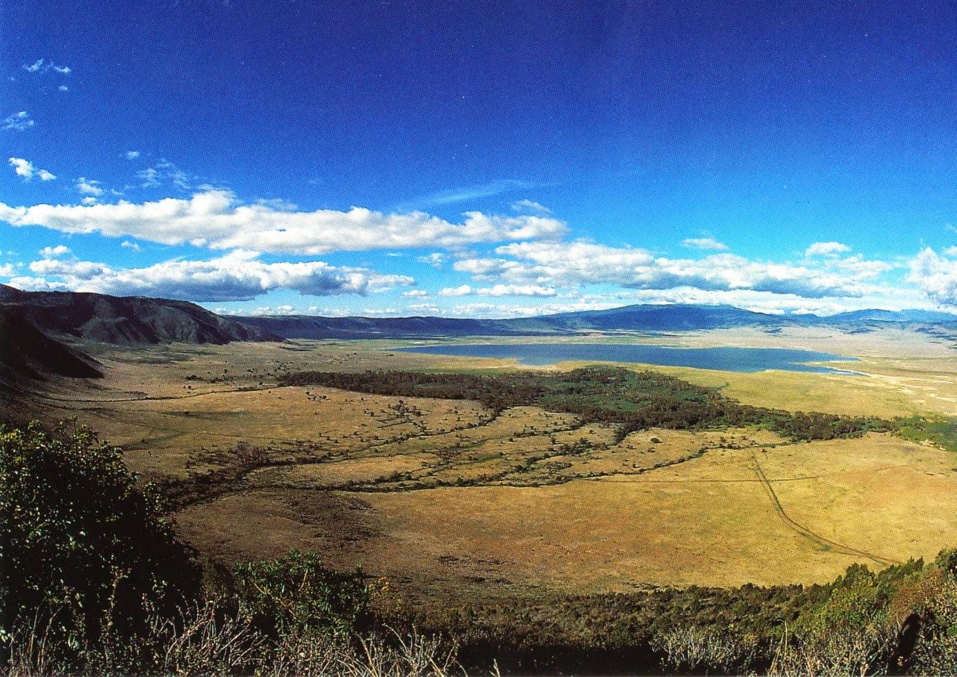 postcard, tanzania, ngorongoro conservation area