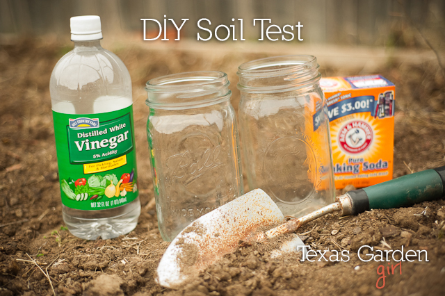 How to test your soil for pH levels