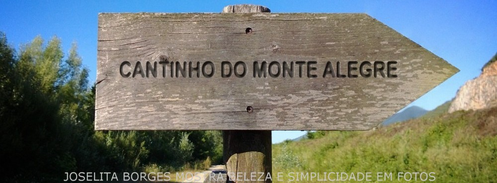 CANTINHO DO MONTE ALEGRE