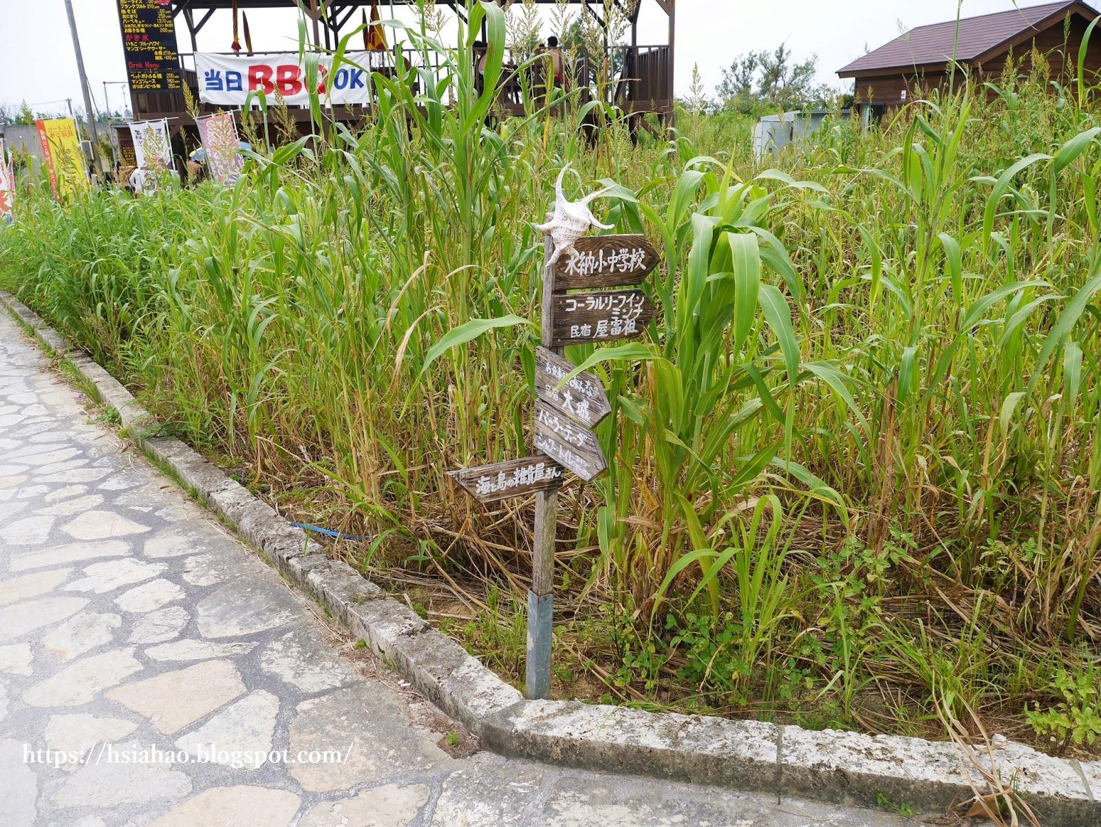 沖繩-景點-水納島-Minna-Beach推薦-自由行-旅遊-Okinawa