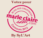 CONCOURS BLOG CREATIF 2013