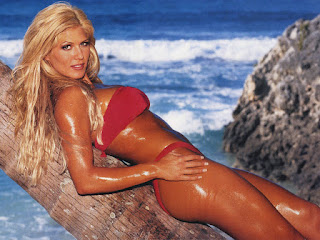 Torrie Wilson Hot