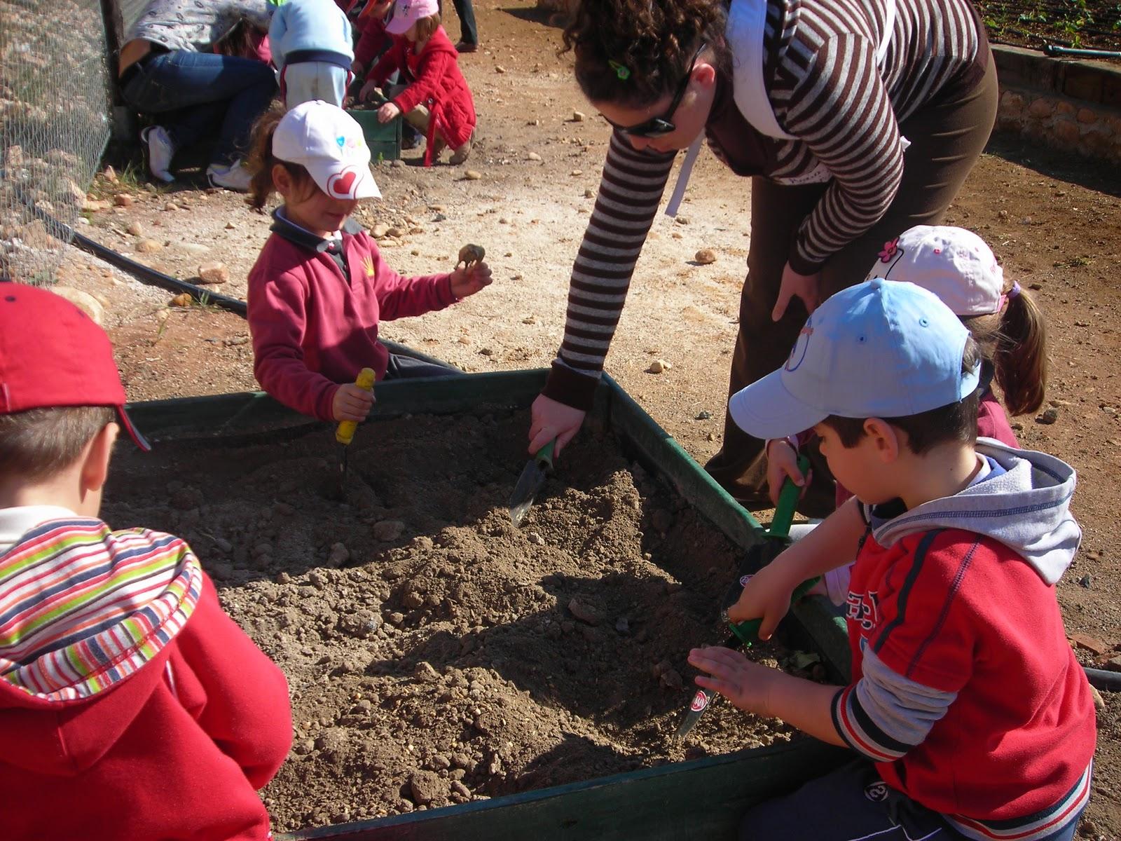 Yo planto un rbol pinceladas for Como crecen los arboles para ninos