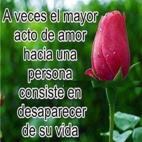 Frases de desamor, acto, amor, persona, desaparecer, vida.