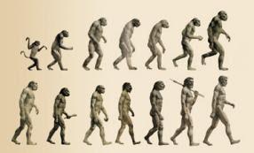 la evolucion humana ciencia