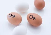 Tanda tanda dan penyebab wanita mandul