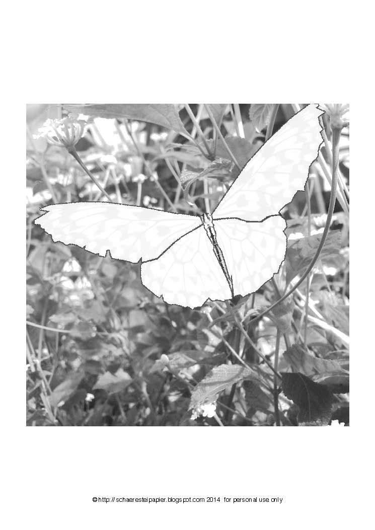 Kostenlose Malvorlage: Schmetterlinge auf der Blumenwiese
