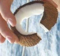 memotong batok kelapa jadi beberapa ring