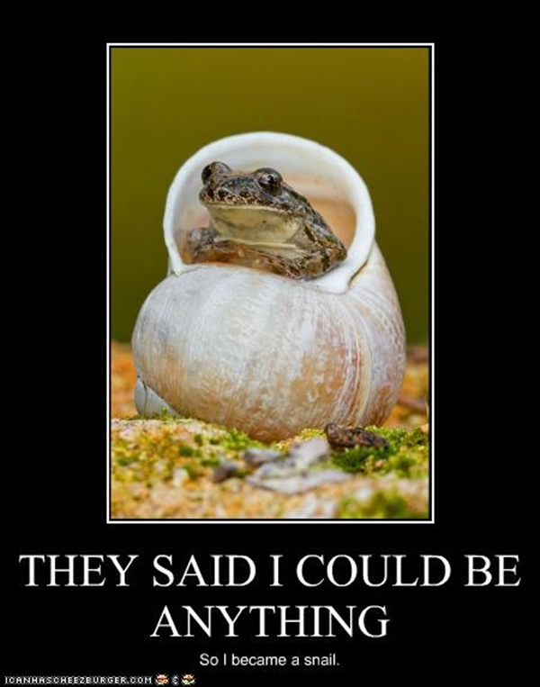 funny-pictures-animal-meme-they-told-me-