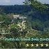 Hotel di Ubud Bali Bintang 5, Daftar Nama dan Alamat