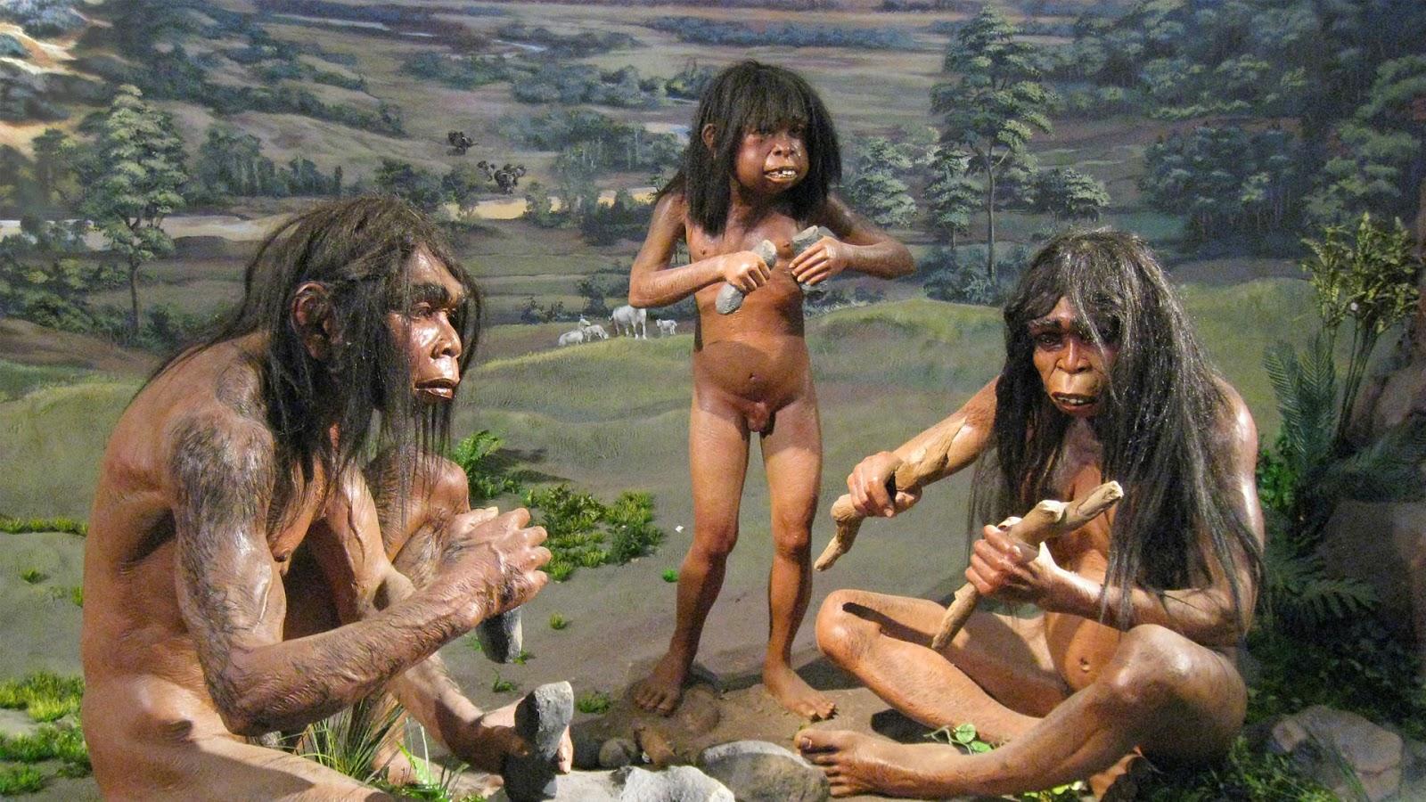 Diorama kehidupan manusia purba di dalam Museum Sangiran