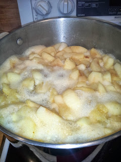 cooking applesauce, making applesauce