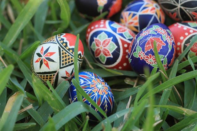 Quail Traditional Pysanky Eggshells
