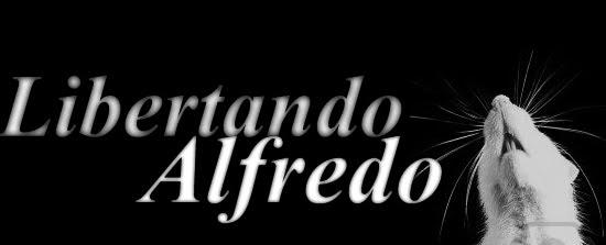 Libertando Alfredo