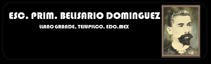 Escuela Primaria Belisario Dominguez zona 014