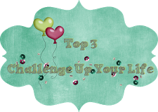 Top 3 - 10/2014 bei Challenge Up Your Life