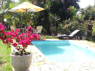 Vendo , Troco ou alugo Casa / Chácara - Brasil -foto piscina