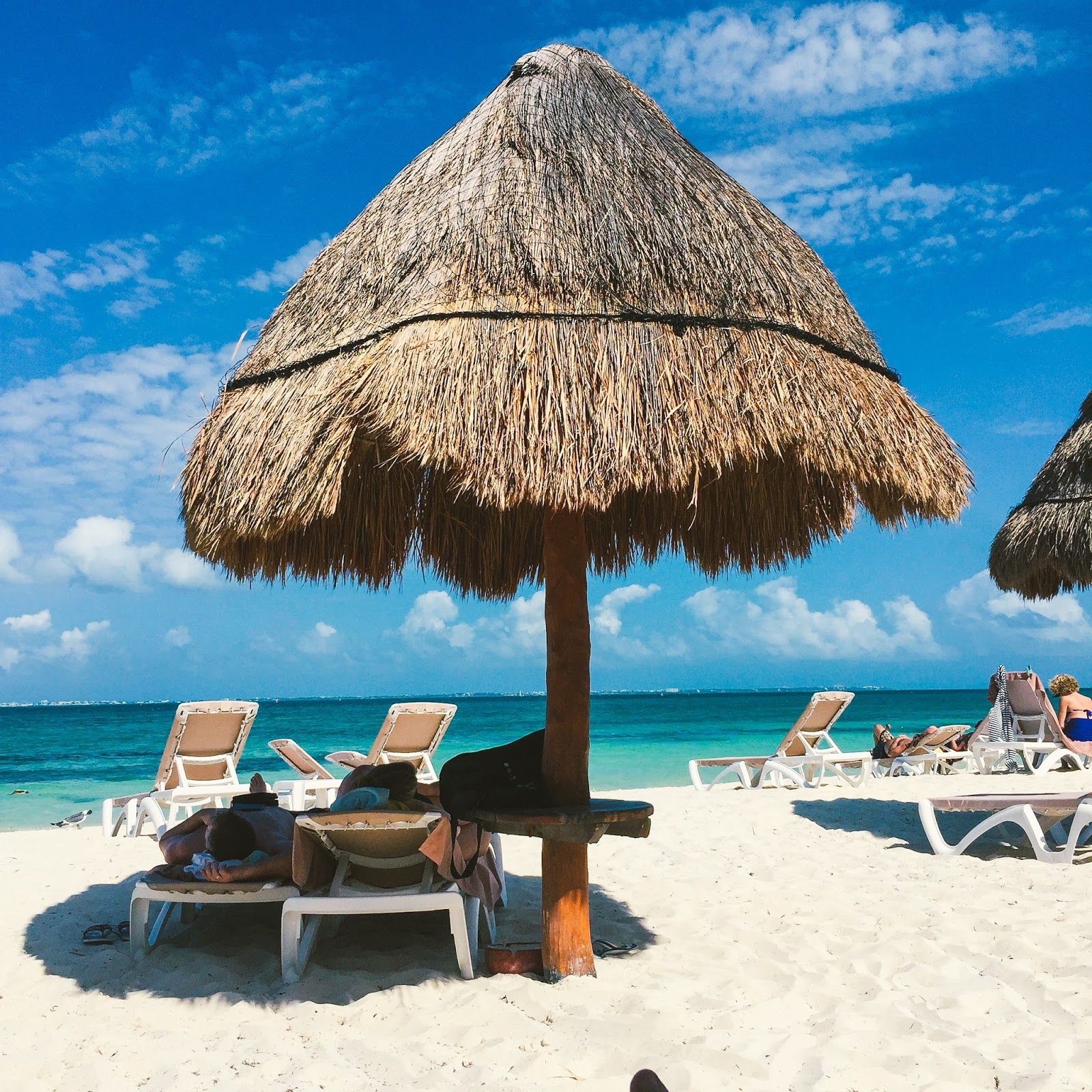 The Summer of Seaweed for the Riviera Maya and Playa Excellence playa mujeres pictures resort