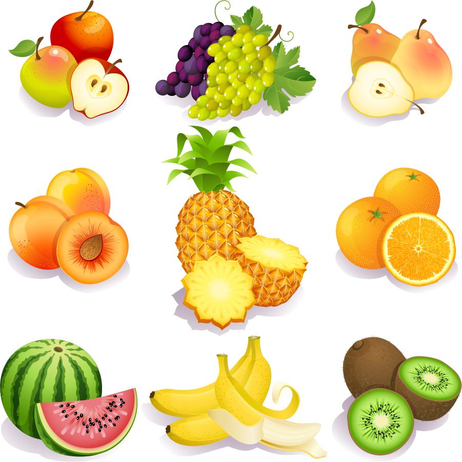 新鮮な果物のクリップアート fresh fruits vector イラスト素材 | ai