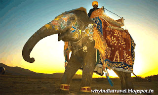 Classical Cultural Rajasthan Tours in India