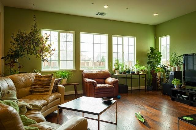 desain interior warna hijau