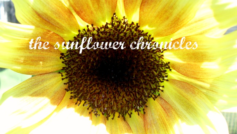 The Sunflower Chronicles