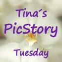 Tinchen's Blog