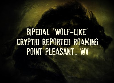 Bipedal 'Wolf-Like' Cryptid Reported Roaming Point Pleasant, WV