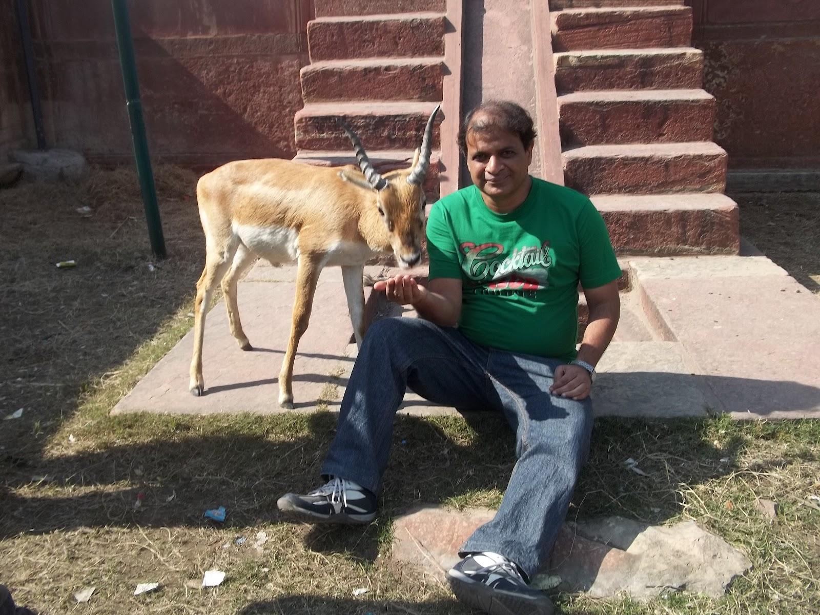 Wanderlust Malsi Deer Park Dehradun