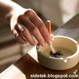 Melihat Karakter Pria Berdasarkan Rokoknya