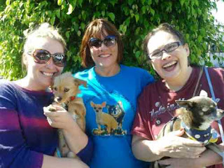 Ann Pollock of Chihuahua Rescue of San Diego (Center) with new doggie parents