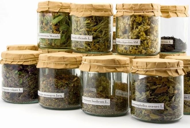 الاعشاب الطبية, الطب البديل, الاعشاب, العلاج بالاعشاب, الاعشاب الطبيعية, صحة,