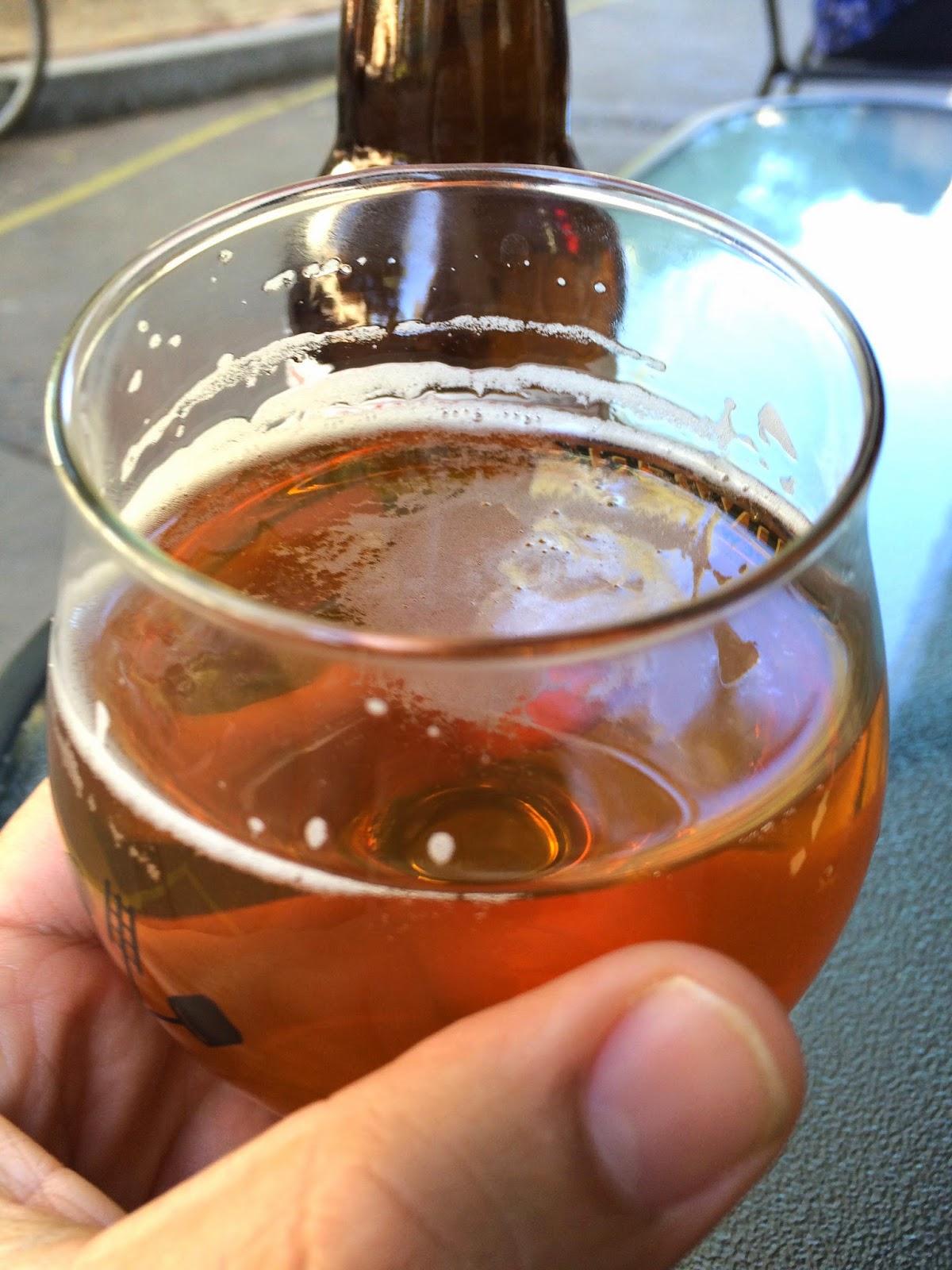 Lagunitas Brewing Sucks Ale 2