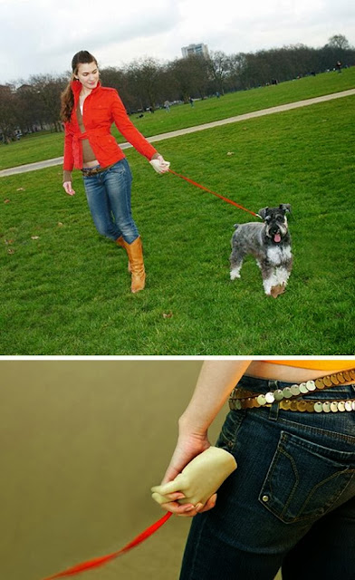 Innovative and Clever Dog Leashes (15) 12