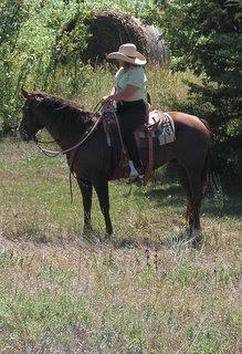 Richard Winters Horsemanship