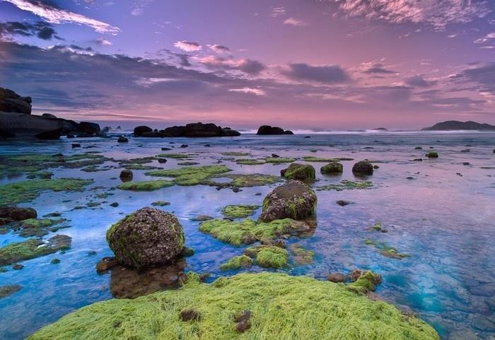 Những phiến đá phủ rong rêu dưới làn nước trong vắt dần hiện ra - Ảnh: Andre Luu
