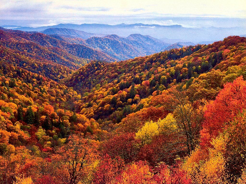NC Mountain News October 2012